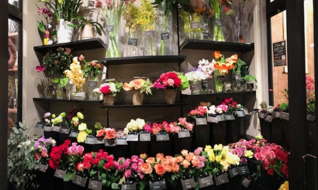 FLOWER AND DESIGN SOWAKA